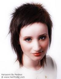 criwn hair cut haircut with a very short crown and layers covering the neckline