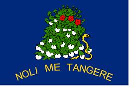Flag Of Alabama File Flag Of Alabama 1861 Reverse Svg Wikimedia Commons