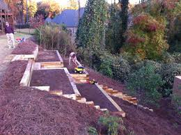 pretty awesome raised garden beds on a hillside gardening