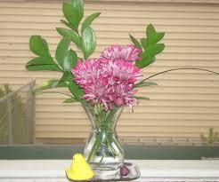 flower preservative recipe handy household hints pinterest cut