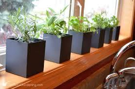 window herb harden indoor kitchen herb garden get busy gardening window herb garden