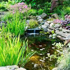 Aquascape Inc Philadelphia Pond Designs Water Features Pond Maintenance In