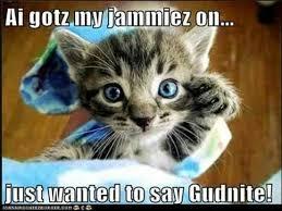 Ai Meme - 20 cutest goodnight memes sayingimages com