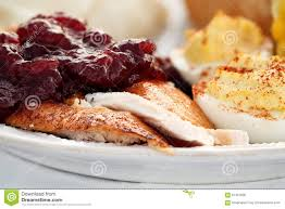 thanksgiving turkey with cranberry sauce stock image image of food