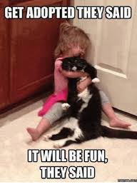 25 best memes about adoption adoption memes