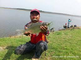 Umpan Mancing cara mancing ikan tawes