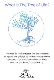 Tree Symbol Meaning | the tree of life connects the ground and our physical existence to