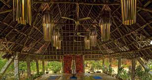 wanacom to the dune eco village and chopra healing center