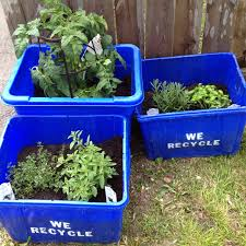 eco garden gardening containers pinterest eco garden