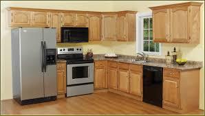affordable ebay rta kitchen cabinets on kitchen ideas kitchen