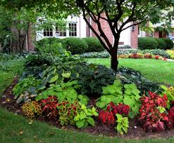 landscaping around trees plants ideas interesting design ideas