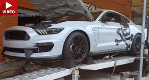 lethal mustang lethal performance previews supercharged mustang gt350