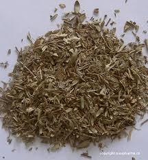 thym serpolet cuisine thym serpolet thymus serpyllum creapharma