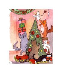 cat greeting card cat card