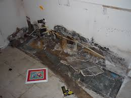 mildew vs mold stunning there are many cleaners out there that