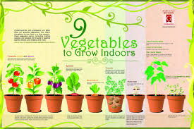 Hanging Vegetable Gardens by Growing A Vegetable Garden Indoors Gardening Ideas