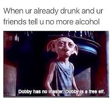Tell Me More Memes - when ur already drunk and ur friends tell u no more alcohol dobby