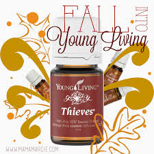 mama marcie young living essential oils for the fall candle addict
