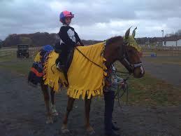 Horse Rider Halloween Costume Archie Midlife Horse Riding Horse