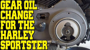 harley davidson sportster primary oil change youtube