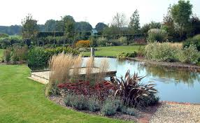 easy landscape for a large pond large pond and plantings my