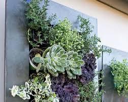 planter for succulents succulent planter etsy