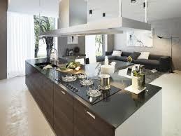 Offenes Wohnzimmer Modern Einrichtungsideen Für Wohnzimmer Mit Offener Küche Moderne Offene