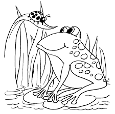 tadpole coloring page 100 frog coloring page frog coloring pages for kids animal
