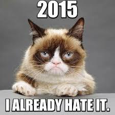 234 best random fandom memes tard the grumpy cat images on