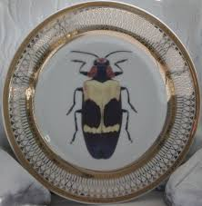 halloween plates gold porcelain bug insect plates entomology halloween on