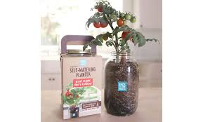 outstanding self watering planter diy pictures inspiration