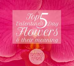 Meaning Of Pink Meaning Of Roses Archives Freytags Florist