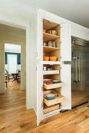 Building Wood Shelves In Pantry by Kitchen Pantry Cabinets With Pull Out Trays U0026 Shelves