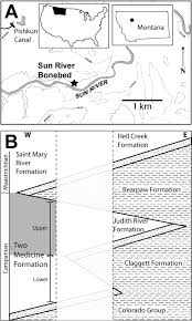 County Map Of Montana by Taphonomy Of A Juvenile Lambeosaurine Bonebed From The Two