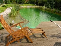 Backyard Swimming Ponds by 71 Best Swimming Ponds Images On Pinterest Natural Pools