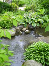 anderson japanese gardens in rockford illinois a zen paradise