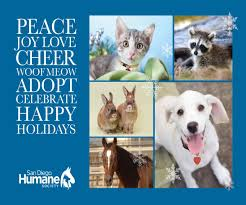 cards for animal rescue best images collections hd for