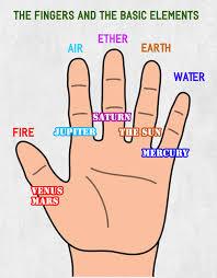 finger phalanges and calendar months