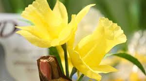 video how to create paper daffodils for easter martha stewart