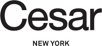 cesar new york modern european kitchen design nyc
