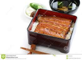 cuisiner une anguille anguille grillée sur le riz unaju cuisine japonaise d unagi photo