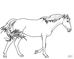 walking thoroughbred horse coloring page free printable coloring