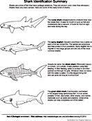 biology coloring pages u0026 worksheets asu biologist