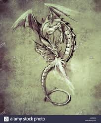 fantasy dragon sketch of tattoo art medieval monster stock photo