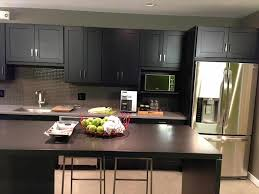 modern birch kitchen cabinets caruba info