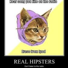 Hipster Cat Meme - 36 best hipster fun images on pinterest funny stuff ha ha and
