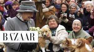 queen elizabeth has adopted a new dog youtube