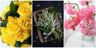 Meaning Of Pink Roses Flowers - 41 flowers with surprising meanings meanings of flowers