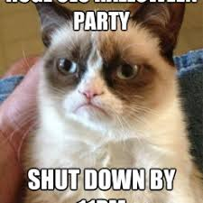 Funny Party Memes - funny cat memes archives page 660 of 983 cat planet cat planet