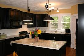 dark kitchen cabinets with light countertops purple floral